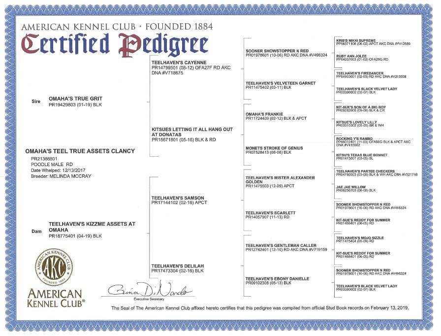 pedigree certificate